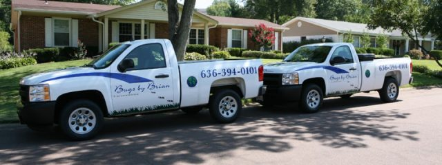 pest control chesterfield mo