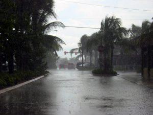 Rain Storm Damp Weather